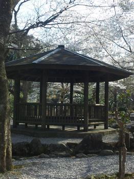 2012.04.08大寧寺3.JPG