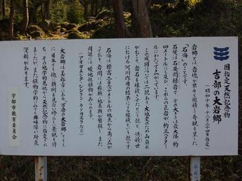 2012.04.08看板.JPG