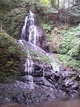 白糸の滝 (4).jpg